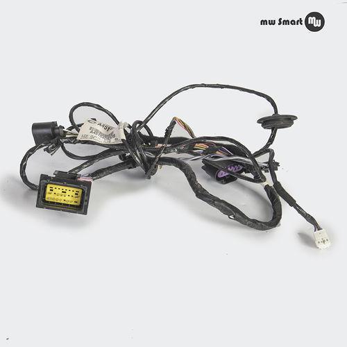 Tür Kabelbaum Smart 451 elektrische Fensterheber links A4515401408