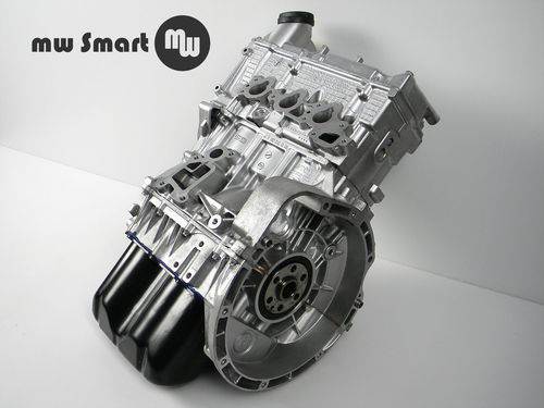AT-Motor Smart 450 698ccm 55 KW Brabus